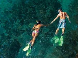 maui snorkeling Lanai snorkeling Lahaina