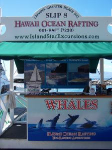 www.hawaiioceanrafting.com