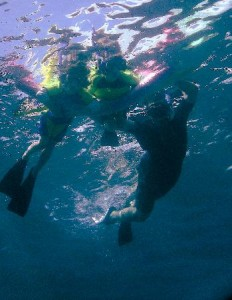 lahaina snorkeling trips crystal blue water