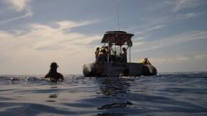 snorkeling around Maui