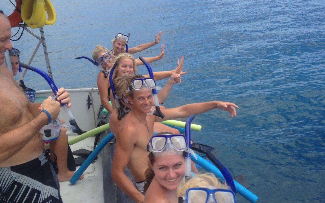 You really must go snorkeling while on Maui, why not let us take you.