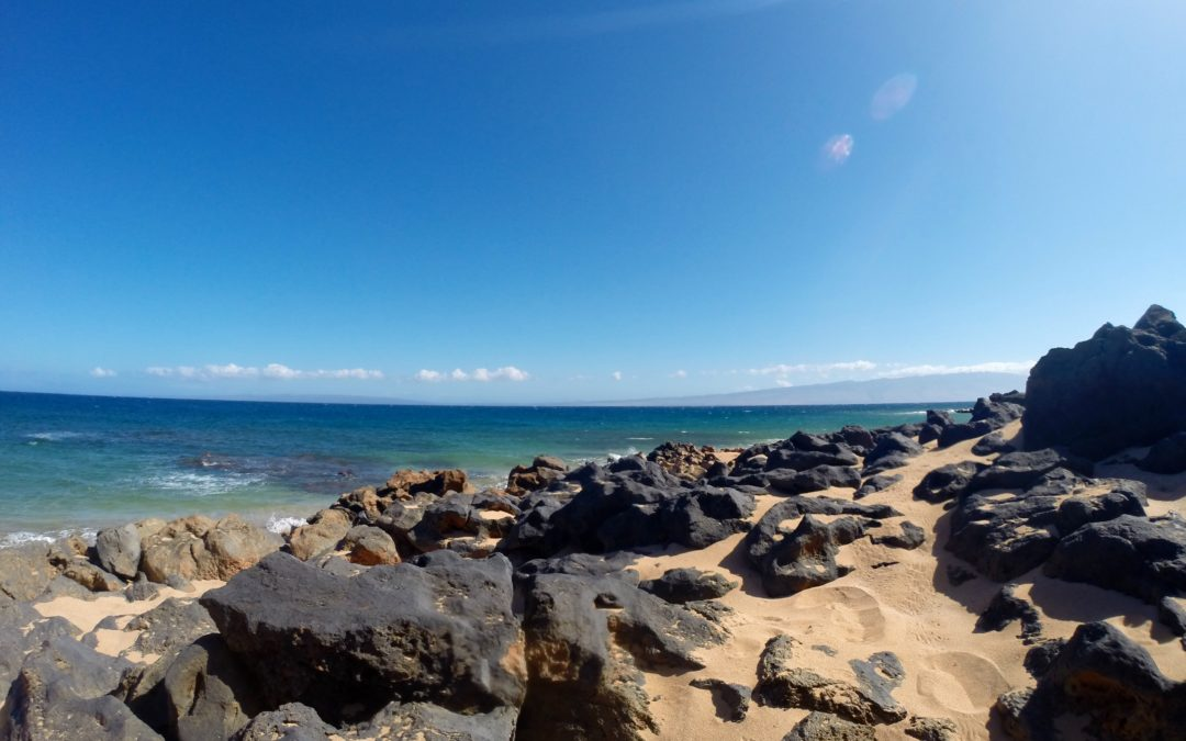 Maui has some truly world class snorkeling.