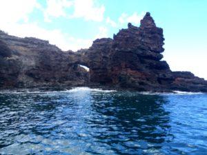 Lahaina snorkel trips