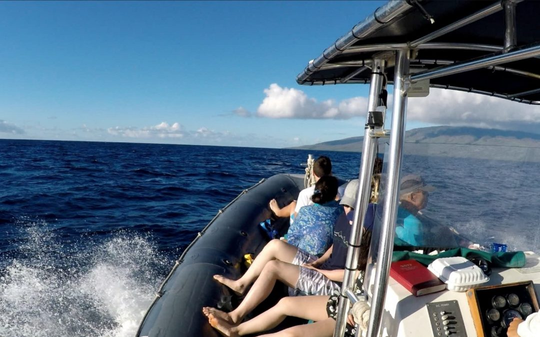 Our most popular Lanai snorkeling adventure leaves daily from Lahaina Harbor!